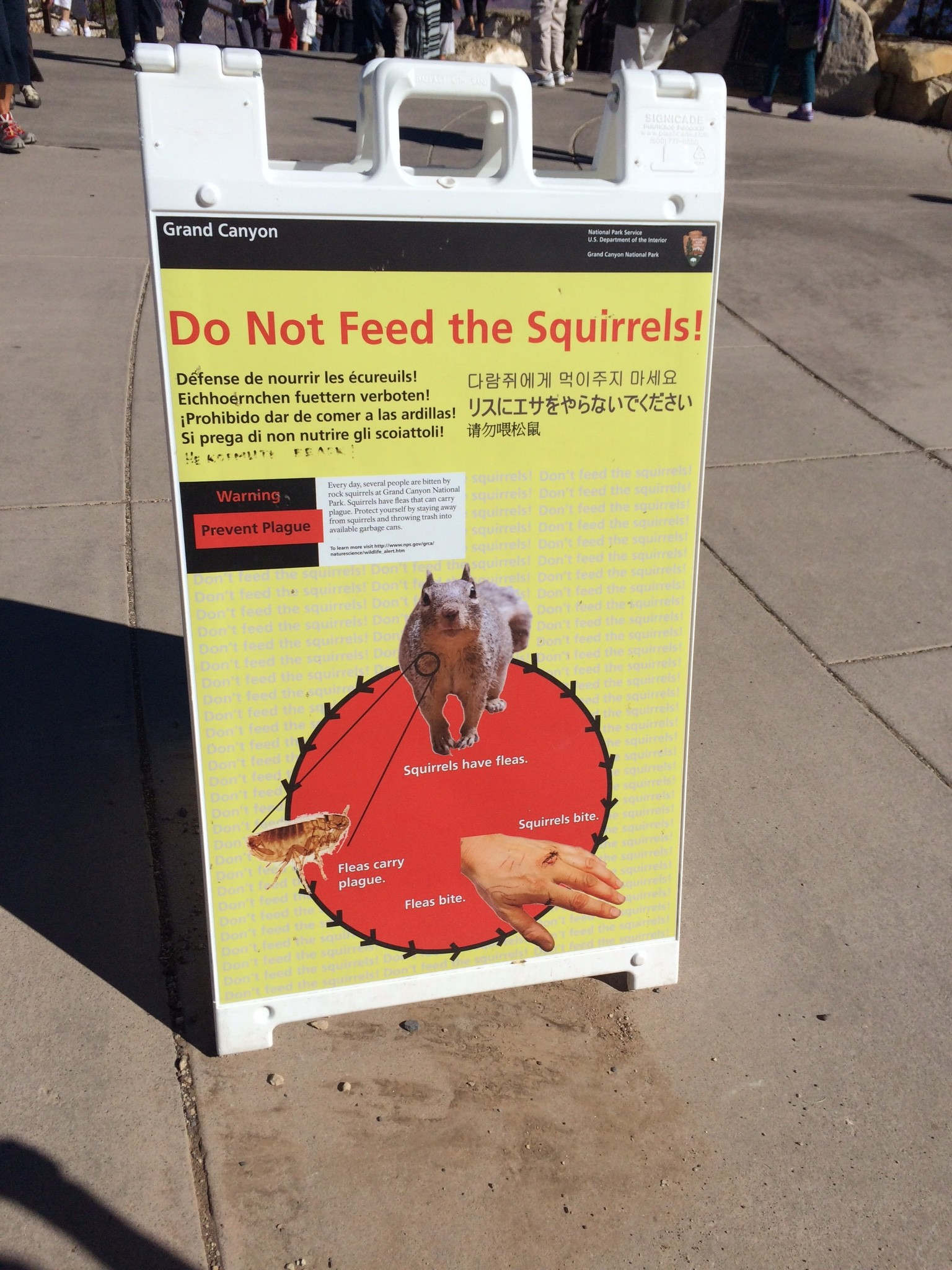 The plague squirrel sounds made us laugh.