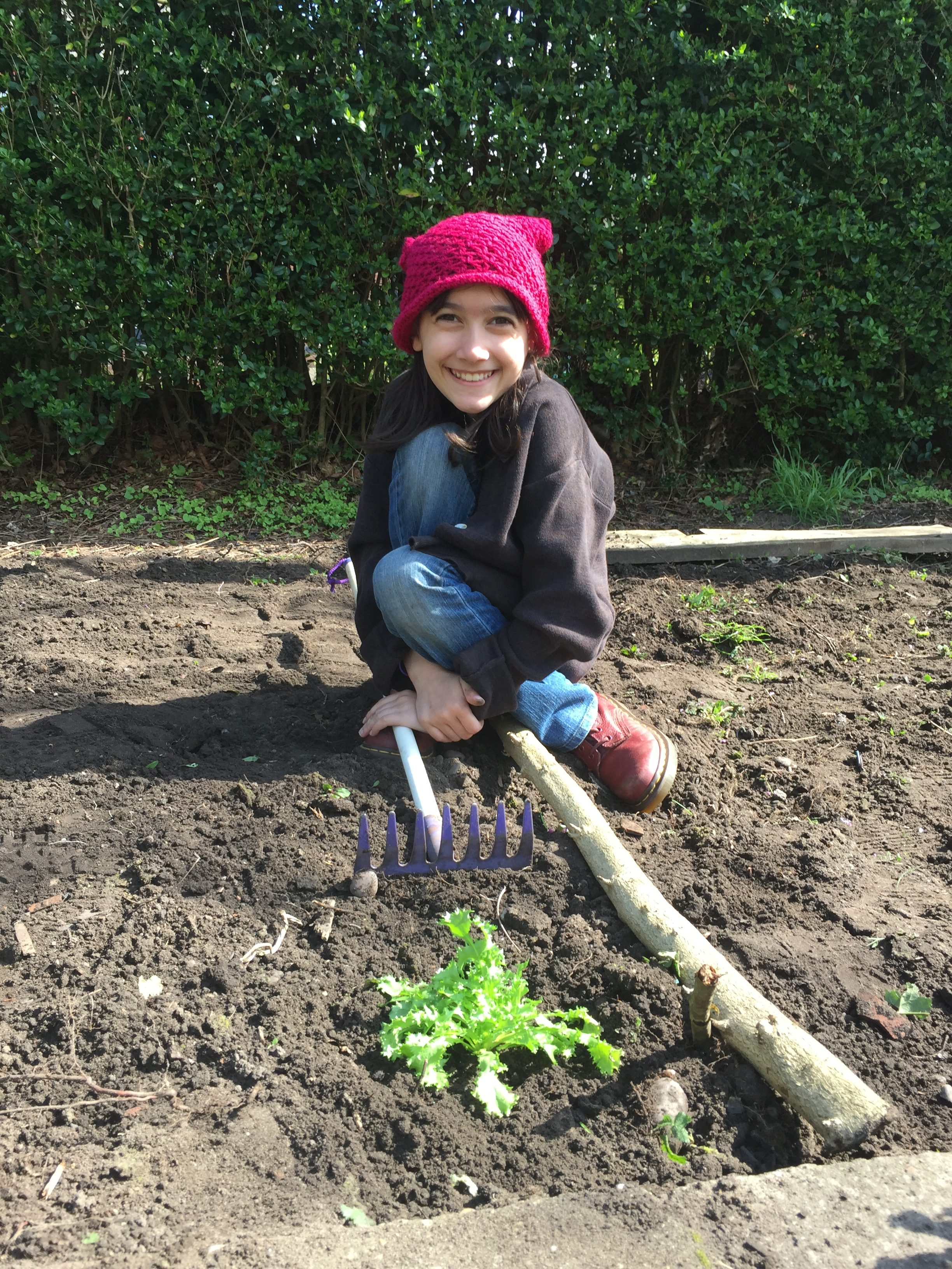 Transplanting our greens to her garden.